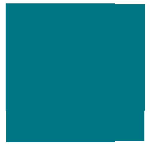 Instagram_Icon_petrol